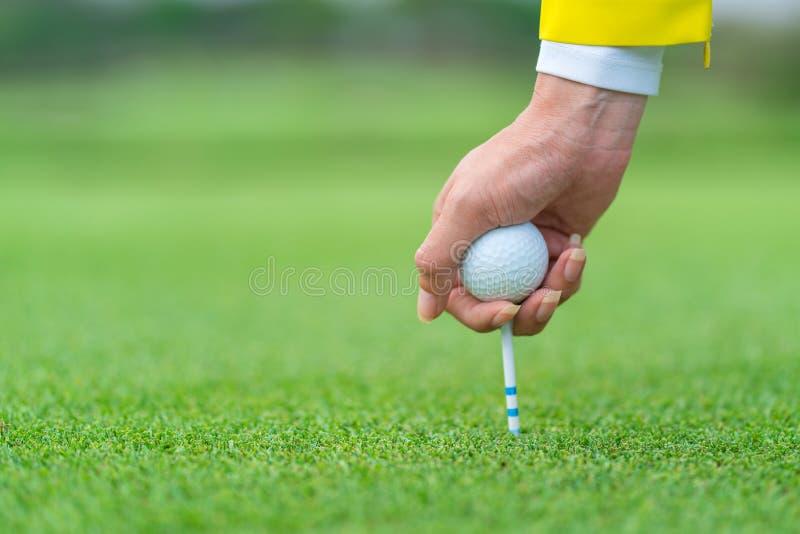 Golfboll för handteburkhåll med utslagsplatsen som är klar att skjutas på golfdomstolen royaltyfria foton