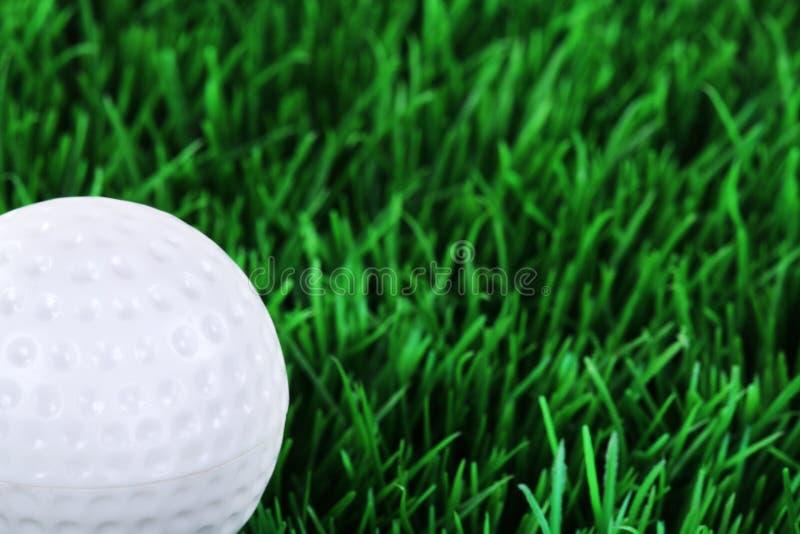 Golfboll i ängen royaltyfri foto
