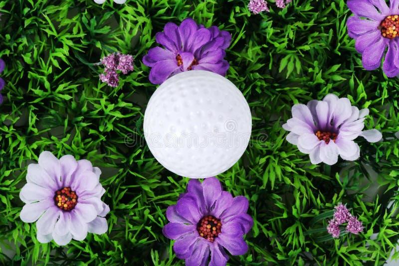 Golfboll i ängen royaltyfria bilder