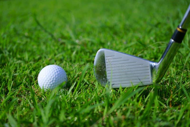 Golfboll och utslagsplats på grön kursbakgrund för golf royaltyfri fotografi