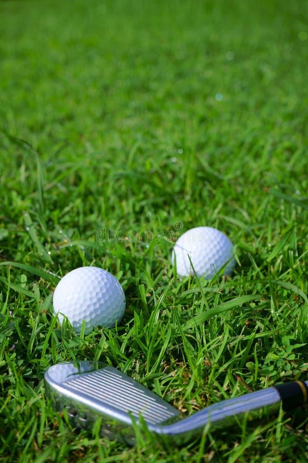 Golfboll och utslagsplats på grön kursbakgrund för golf royaltyfria foton