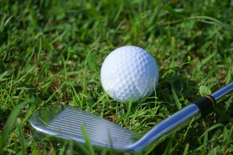 Golfboll och utslagsplats på grön kursbakgrund för golf fotografering för bildbyråer