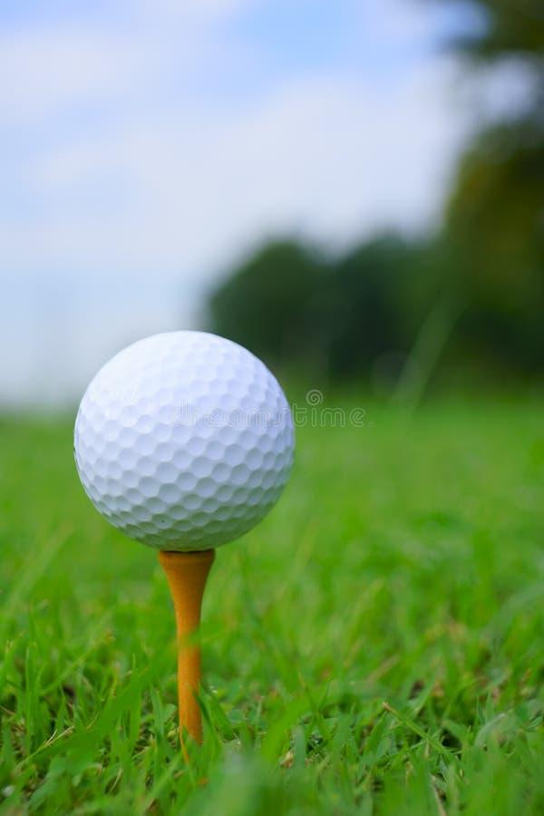 Golfboll och utslagsplats på grön kursbakgrund för golf royaltyfri bild