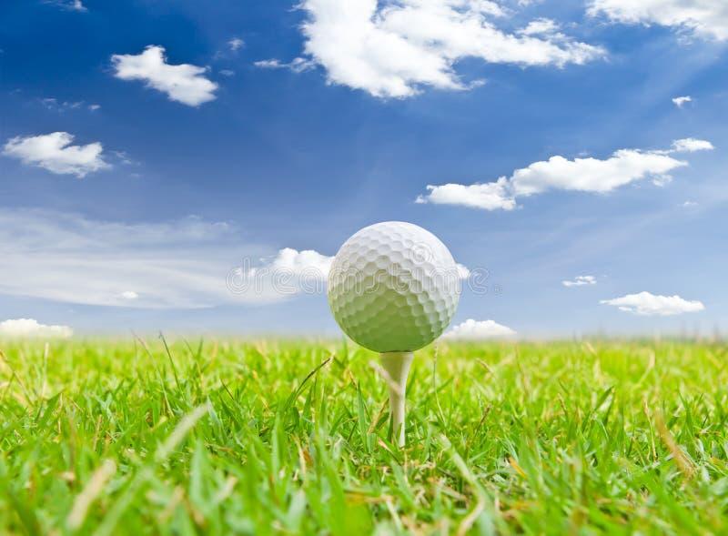 Golfboll och utslagsplatsgräs royaltyfri bild