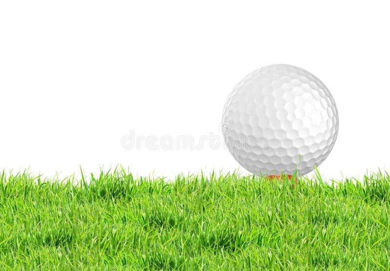 Golfboll på det gröna gräset av golfbanan arkivbild