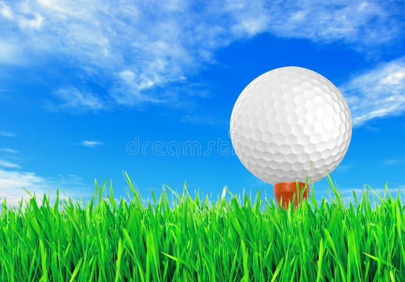 Golfboll på det gröna gräset av golfen royaltyfria bilder