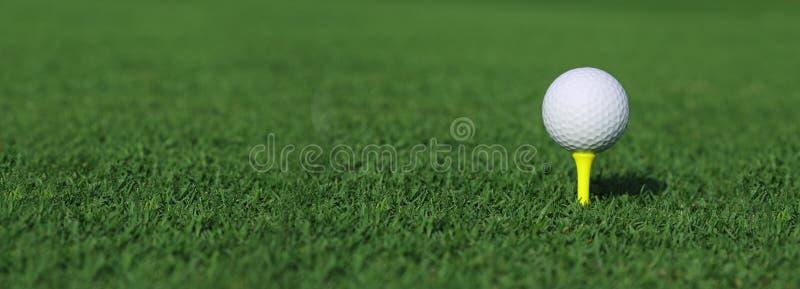 Golfboll på en utslagsplats royaltyfri fotografi