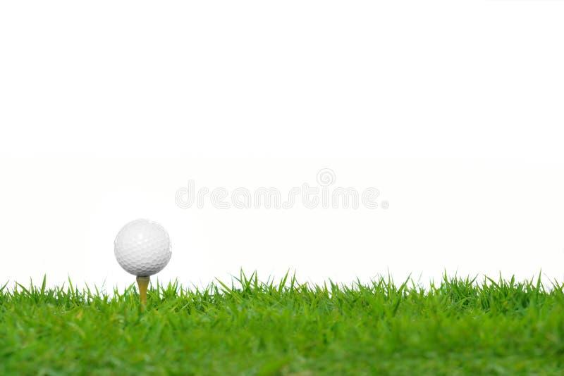 Golfboll på grönt gräs fotografering för bildbyråer