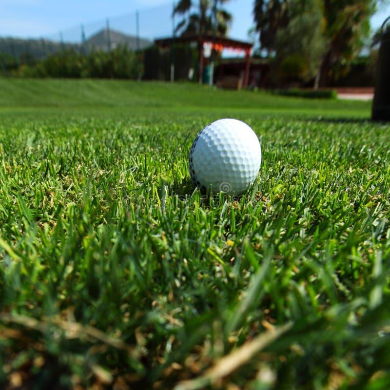 Golfboll på kurs royaltyfri fotografi