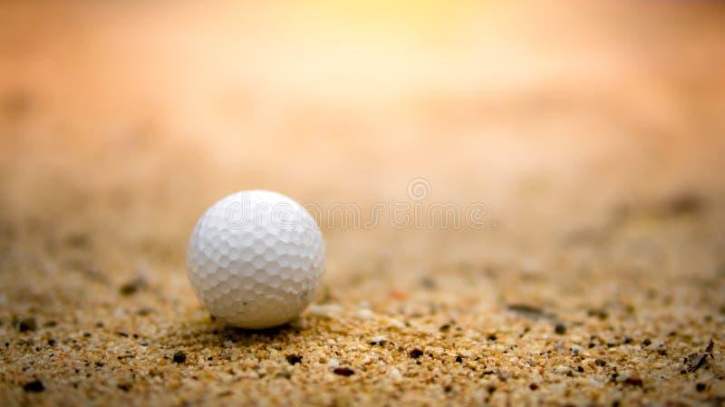 Golfboll på sand i golfbana på solnedgång royaltyfri foto