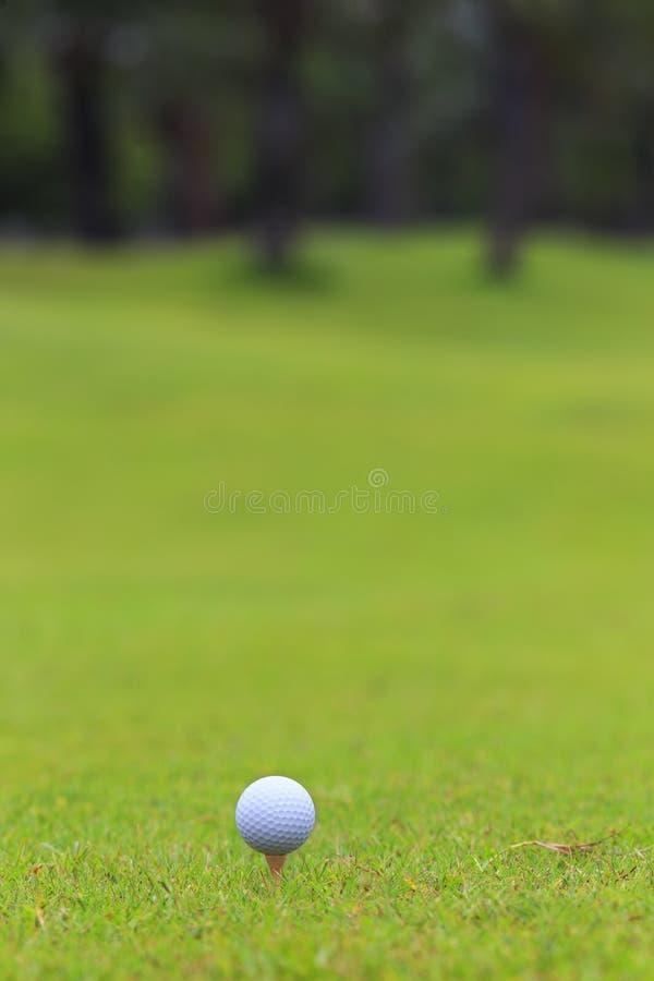 Golfboll på teeing område över en suddig gräsplan. arkivfoton