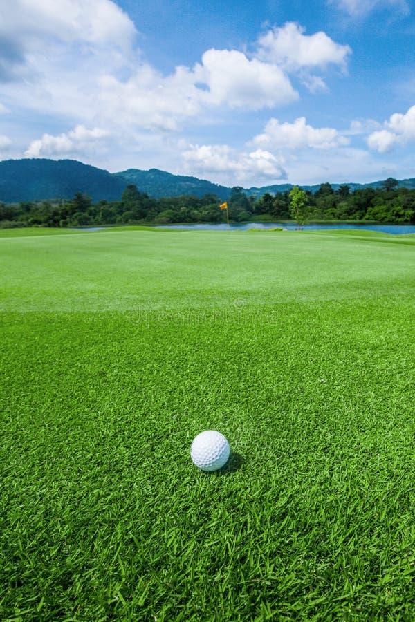 Golfboll på tropisk kurs arkivbild