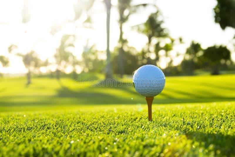 Golfboll på utslagsplats på golfbana över ett suddigt grönt fält på solnedgången arkivfoto
