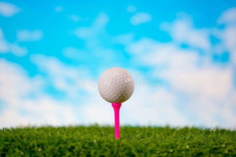 Golfboll på utslagsplats på gräsgolfbana arkivbilder
