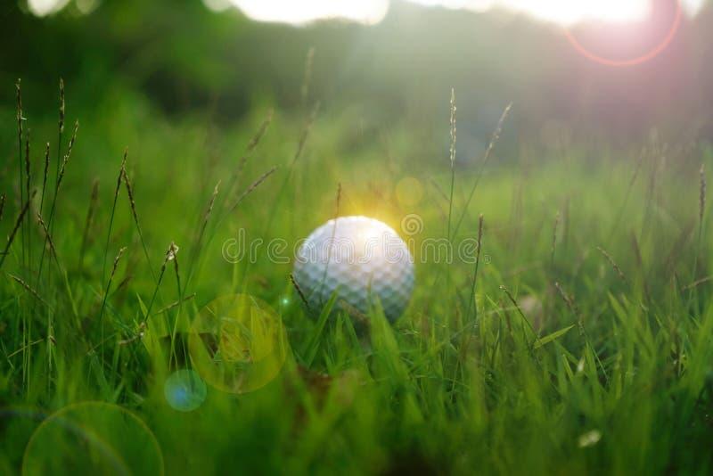 Golfboll på utslagsplats i härlig golfbana på solnedgångbakgrund arkivfoton