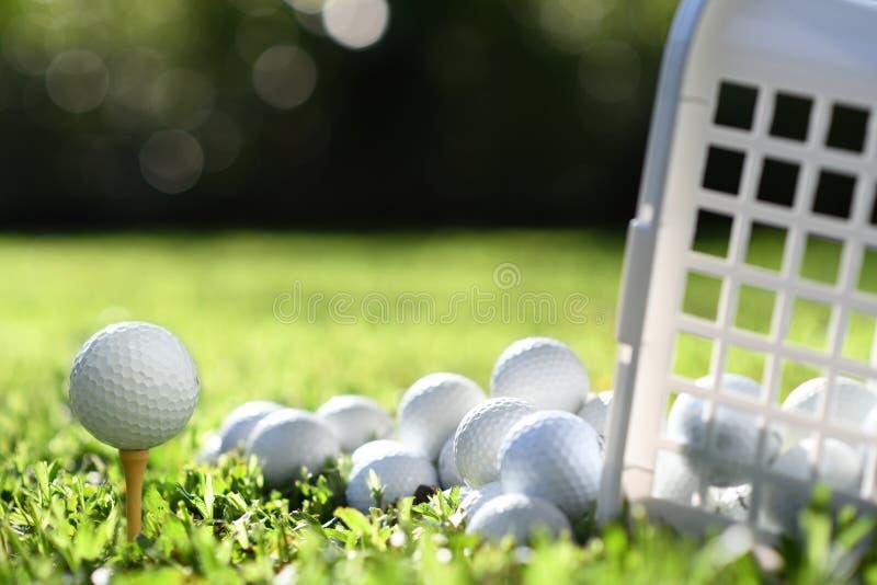 Golfboll på utslagsplats och golfbollar i korg på grönt gräs royaltyfria foton