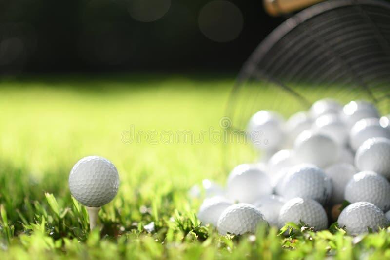 Golfboll på utslagsplats och golfbollar i korg på grönt gräs för övning arkivbilder