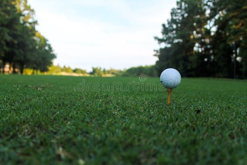 Golfboll på utslagsplats på ett lågt perspektiv royaltyfria foton