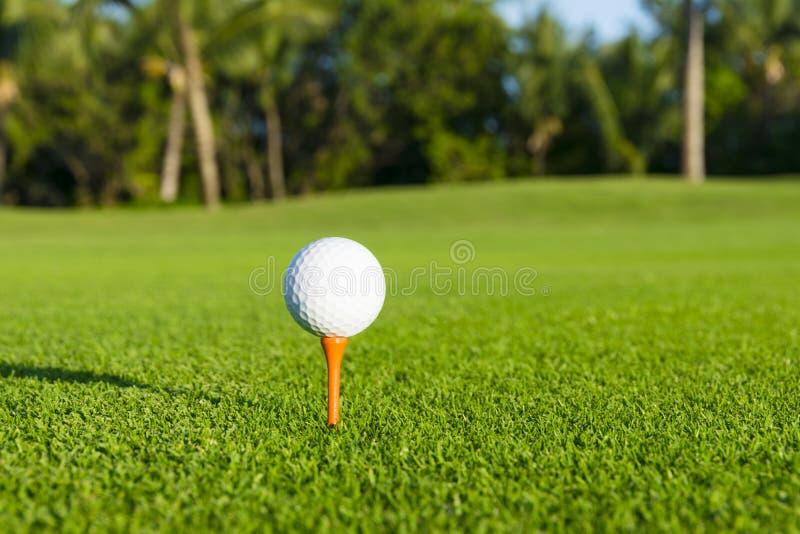 Golfboll på utslagsplats på golfbana över ett suddigt grönt fält royaltyfria foton