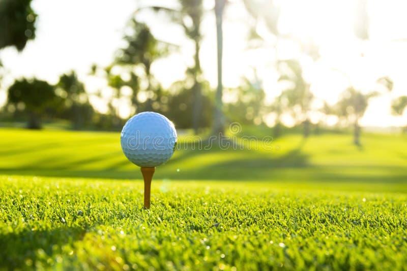 Golfboll på utslagsplats på golfbana över ett suddigt grönt fält på th royaltyfri bild