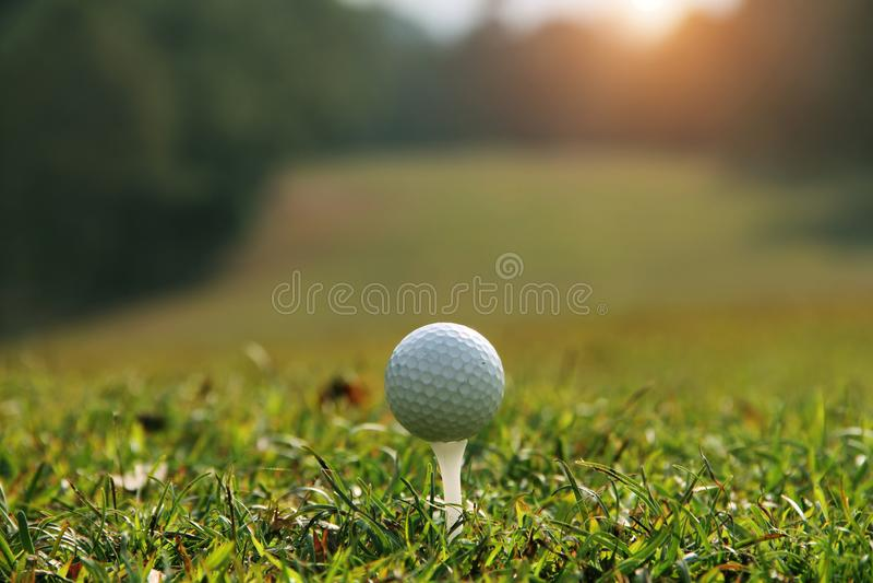 Golfboll p? utslagsplats i aftongolfbanan med solsken i Thailand royaltyfri bild