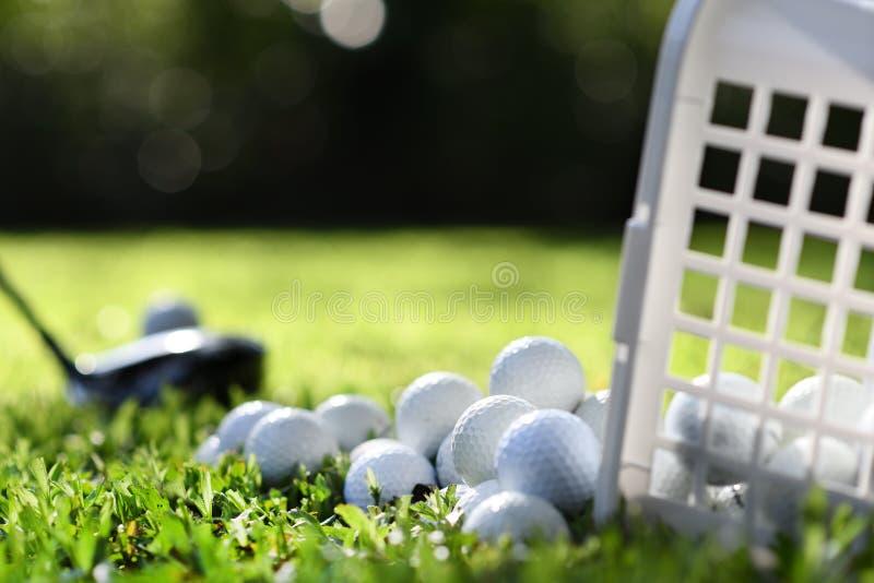 Golfbollar i korg på grönt gräs för övning royaltyfri foto