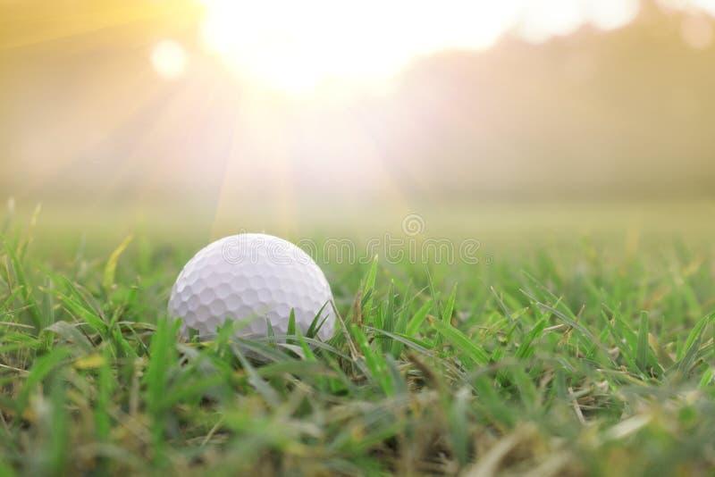 Golfbollar på gröna gräsmattor i härliga golfbanor med sollöneförhöjningbakgrund arkivfoto
