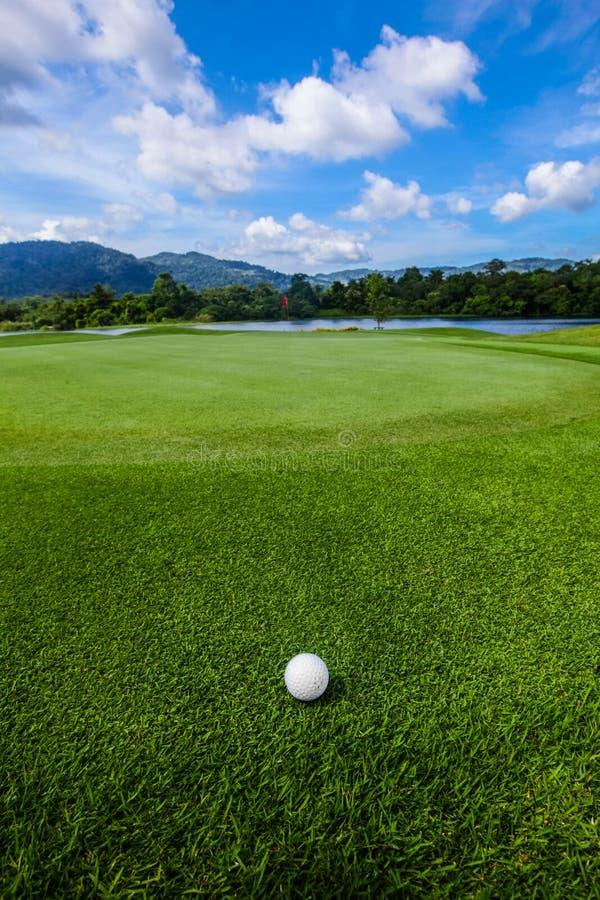 Golfbollen jagar på arkivbild