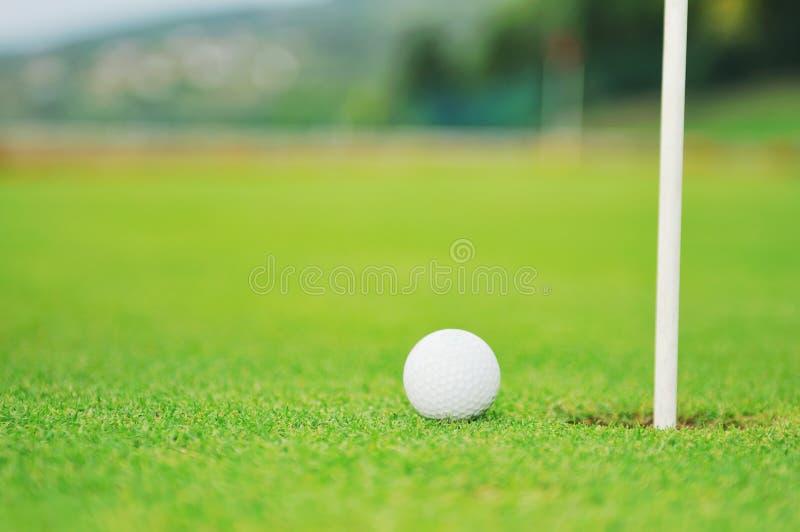 Golfbolllek royaltyfri foto