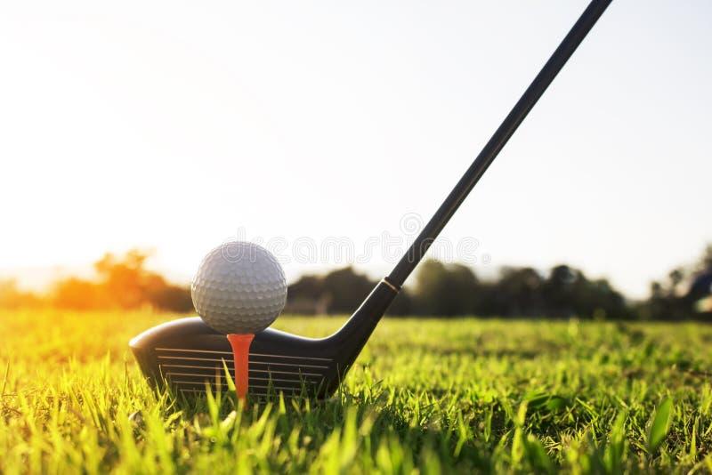 Golfclub en golfbal op groen gras klaar te spelen royalty-vrije stock foto's