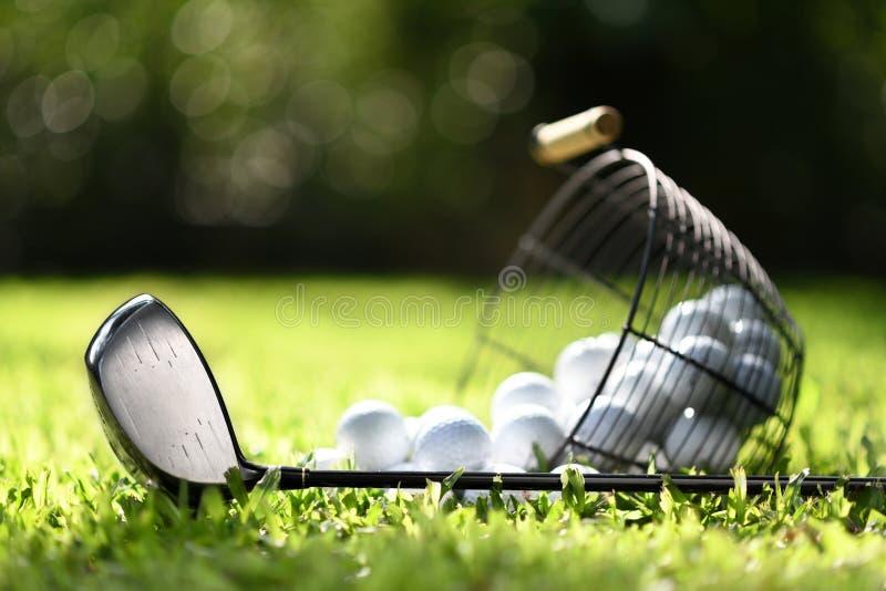 Golfclub und Golfbälle im Korb auf grünem Gras für Praxis stockbilder