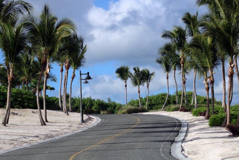 Golfcursus bij Caraïbisch eiland met oceaan in de rug stock fotografie