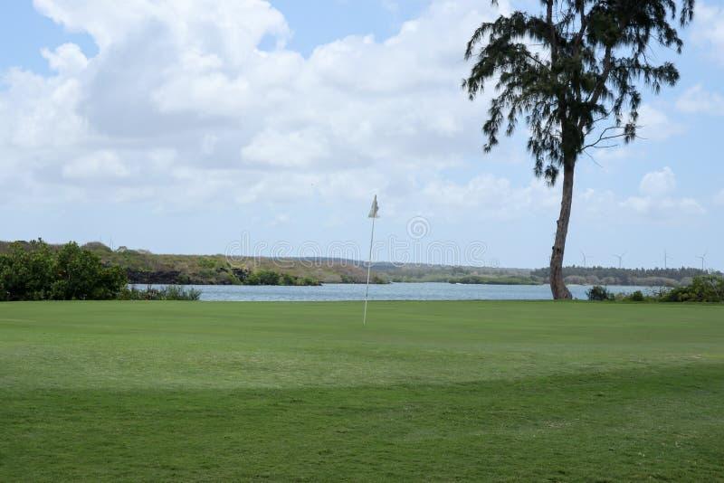 Golfcursus met schitterend groen en fantastisch riviermeer royalty-vrije stock foto