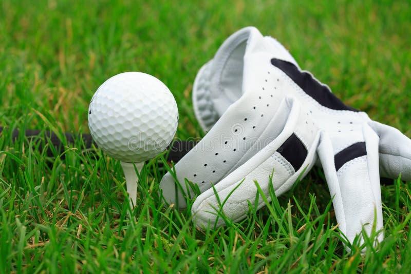 Golfe fotografia de stock royalty free