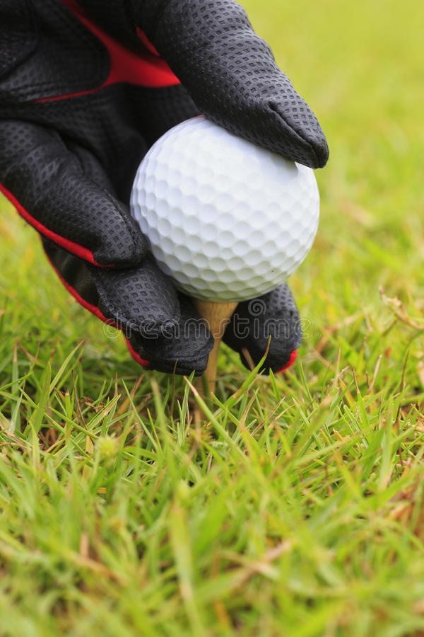 Golfe Foto de Stock Royalty Free