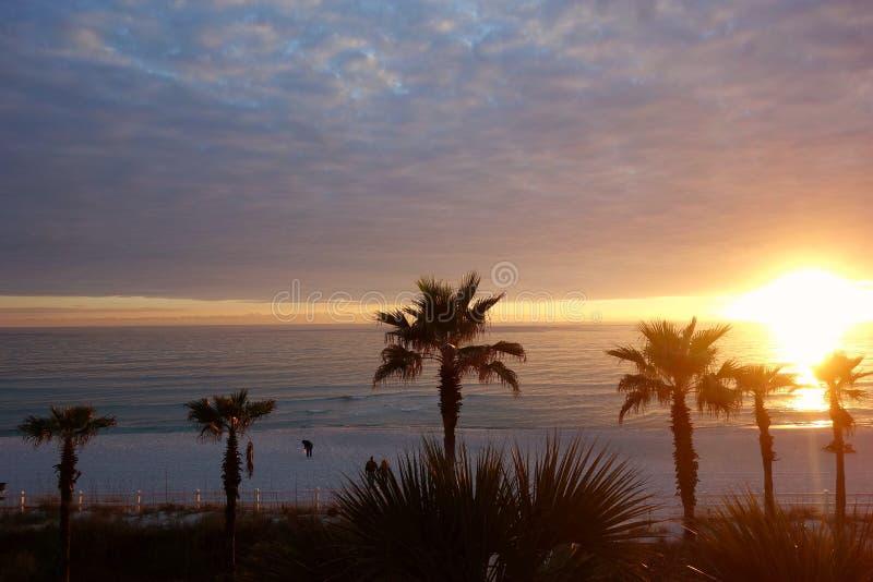 Golfe du Mexique image libre de droits