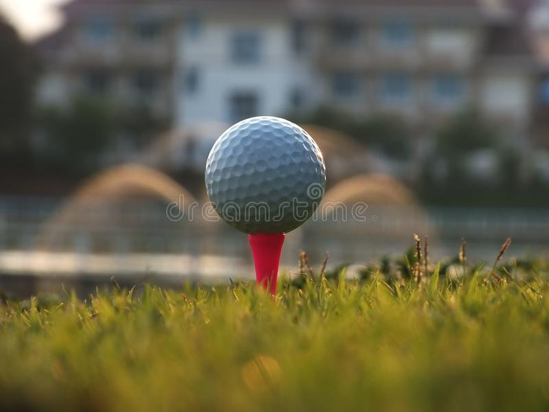 Golfe no T vermelho no gramado verde imagens de stock royalty free