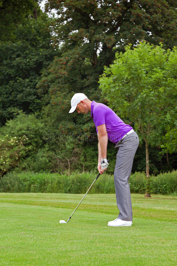 Download Golfer addressing the ball stock image. Image of golfer - 36145537