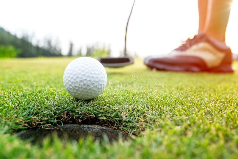 Golfer asian woman putting golf ball on the green golf on sun set evening time. Healthy and Lifestyle Concept royalty free stock image