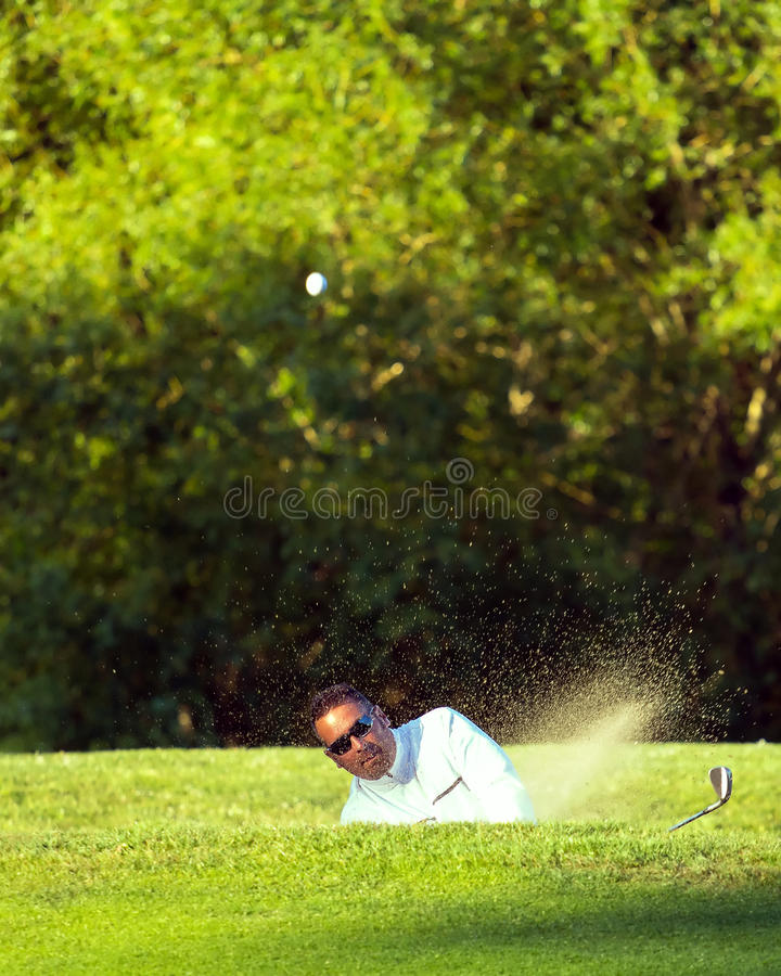 Golfer Hits Ball From Sand Trap Bunker. A golfer hits a ball from a sand trap bunker. The ball and sand head directly towards the viewer with a green tree lined stock images