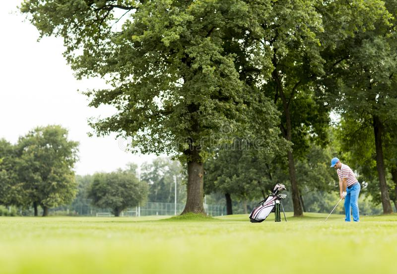 Golfer playing on beautiful golf course royalty free stock images