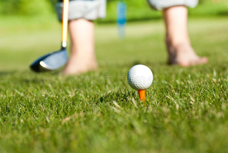 Download Golfer preparing for shut stock photo. Image of game - 25058468