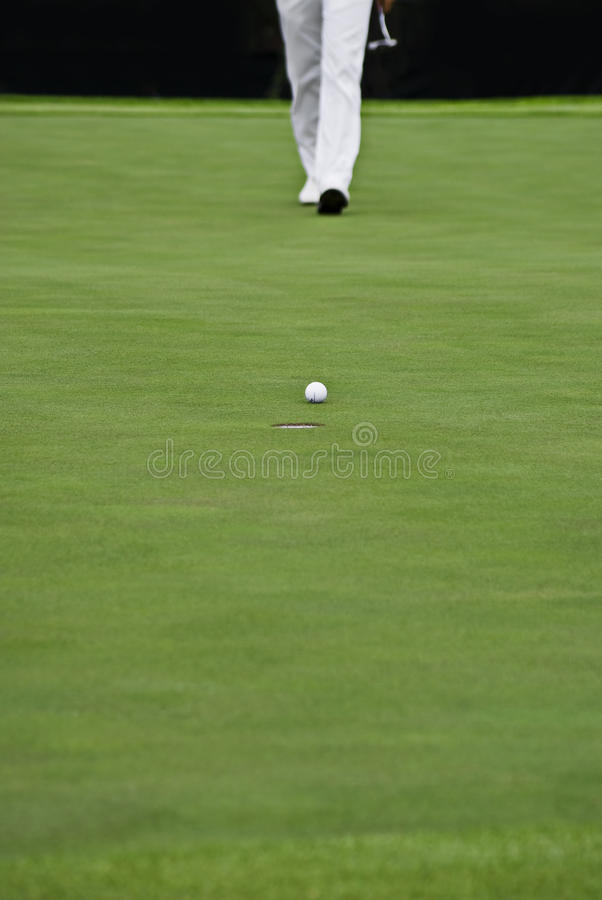 Free Golfer, Putter, And Hole & Ball Royalty Free Stock Image - 12360686