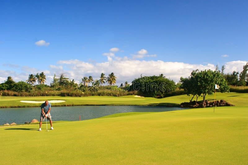 Golfer putting stock photos