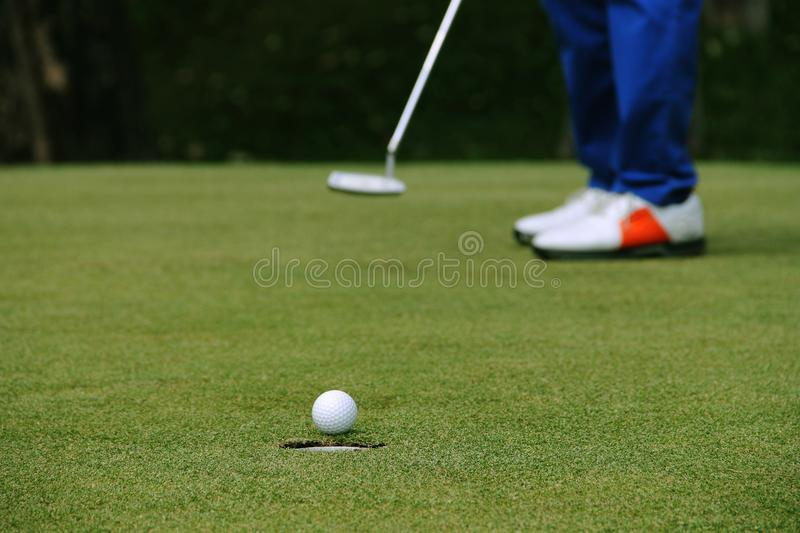 Golfer putting golf ball on the green golf stock images