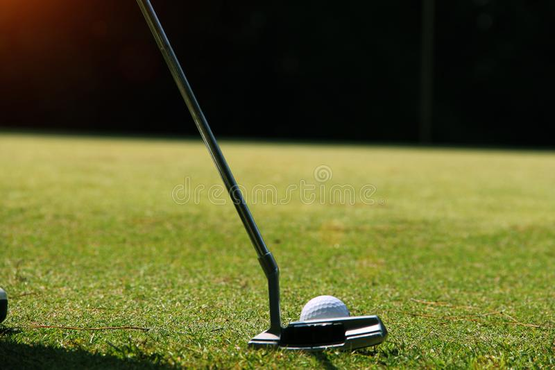 Golfer putting golf ball on the green golf royalty free stock photos