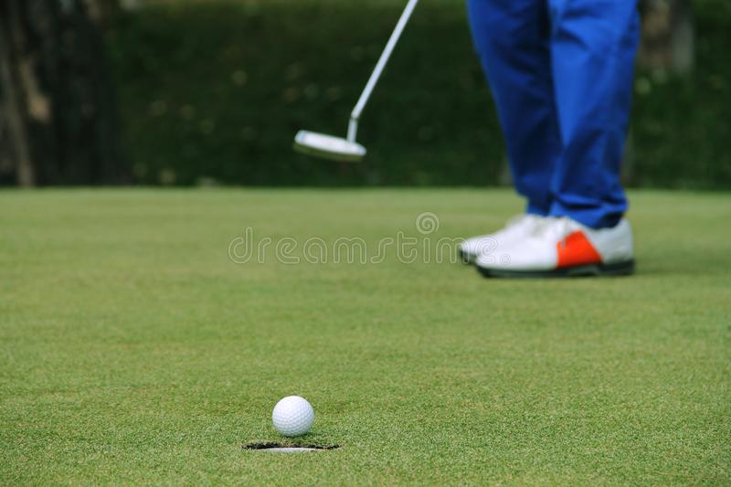 Golfer putting golf ball on the green golf royalty free stock photography