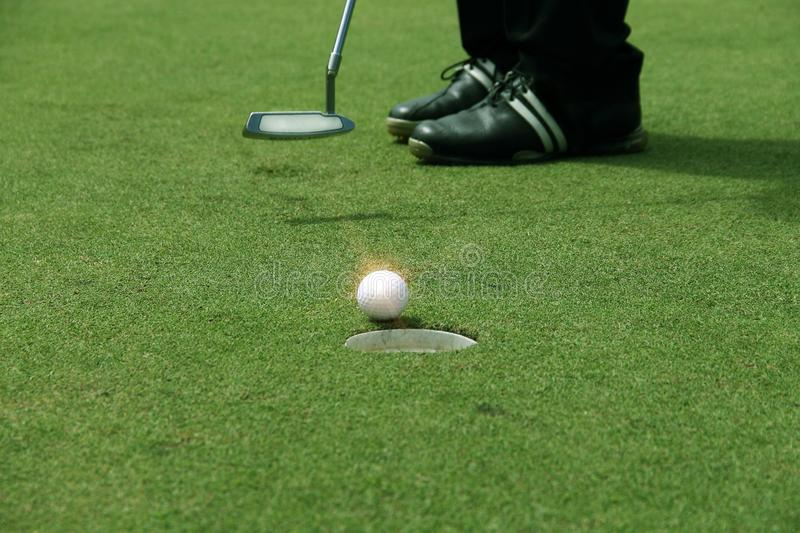 Golfer putting golf ball on the green golf royalty free stock image