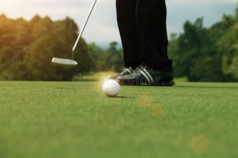 Golfer putting golf ball on the green golf royalty free stock images