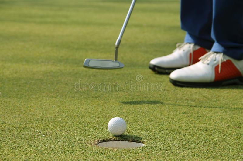 Golfer putting golf ball on the green golf stock photography